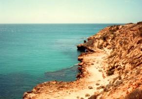 Near Scott Bay SA