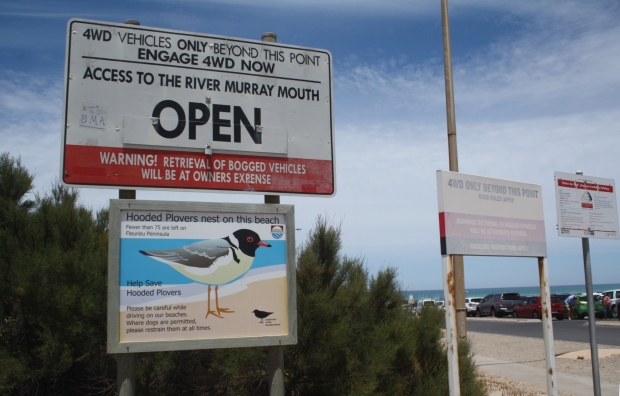 Look for signs before beach driving.
