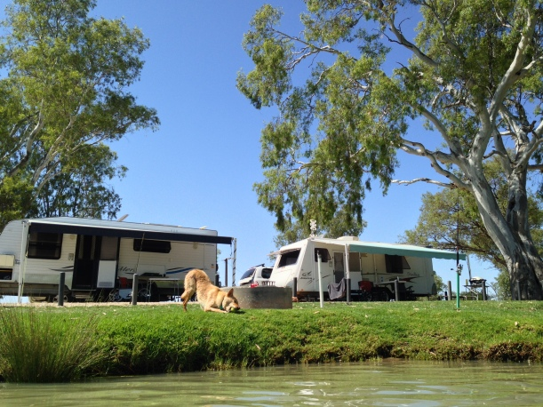 Free camp at Mannum