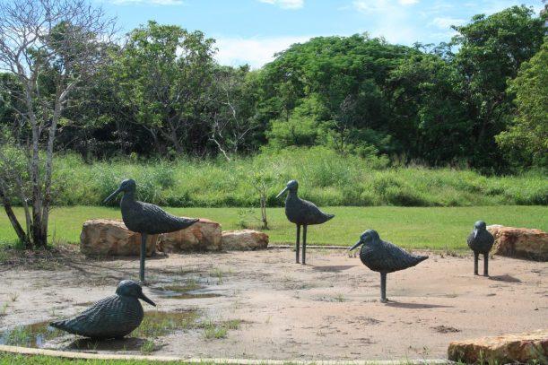 Darwin sculptures