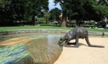 Kangaroo statue Perth
