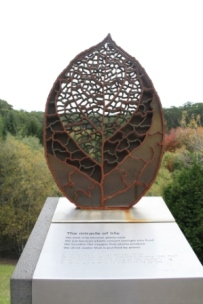 Mt Lofty Botanic Gardens sculpture