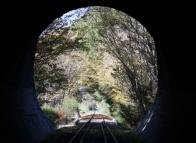 tunnel views