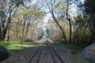 disused rail line