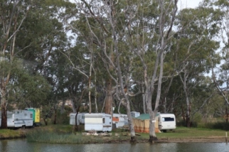 caravan alongside the Murray river