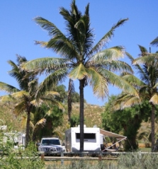 Tropical caravanning