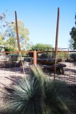 Australian garden design