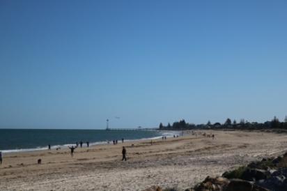 Seacliff and Brighton beaches