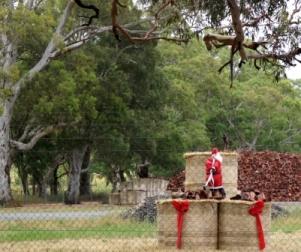 wood cutting Santa