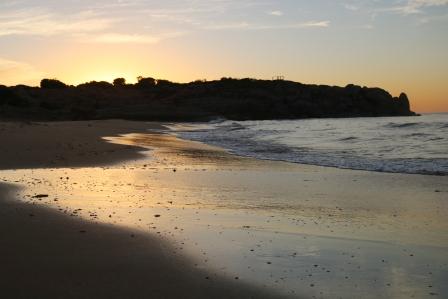 Beach dawn