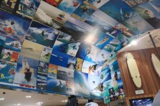 Surf city shops
