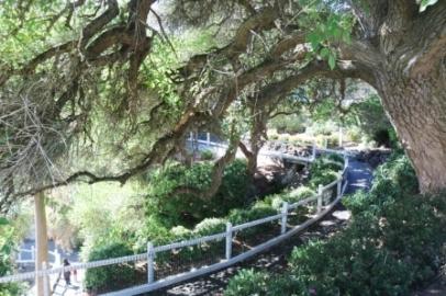 Cave Garden Mount Gambier