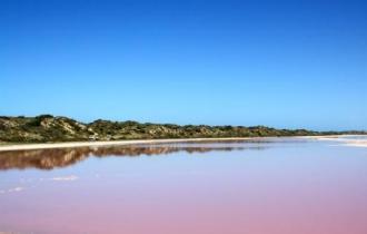 Pink lake WA