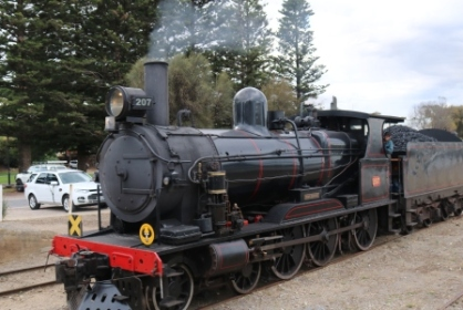 Cockle train