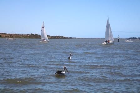 Murray River Goolwa