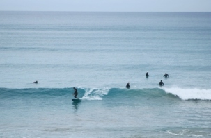 Middleton surfers