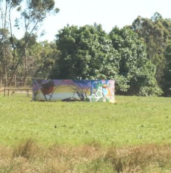 Emu wren public art