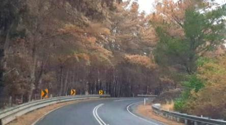 Cudlee Creek bushfire