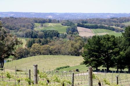 Pike and Joyce Winery