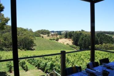 Mt Lofty vineyard winery