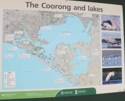 Coorong map