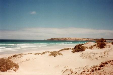 South Australian beaches