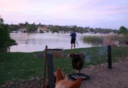 Murray River camping