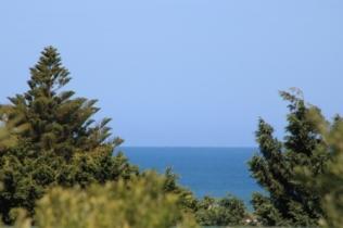 sea glimpses