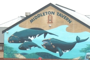 Middleton tavern whale art
