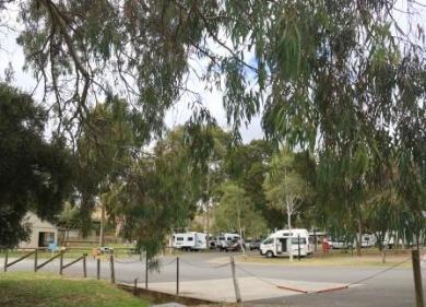 Tanunda caravan park