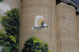 Karoonda silo art