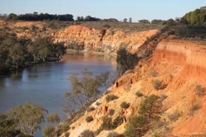 Murray river limestone cliffs