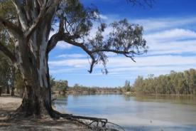 Murray River camping