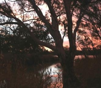 Walker Flat sunset